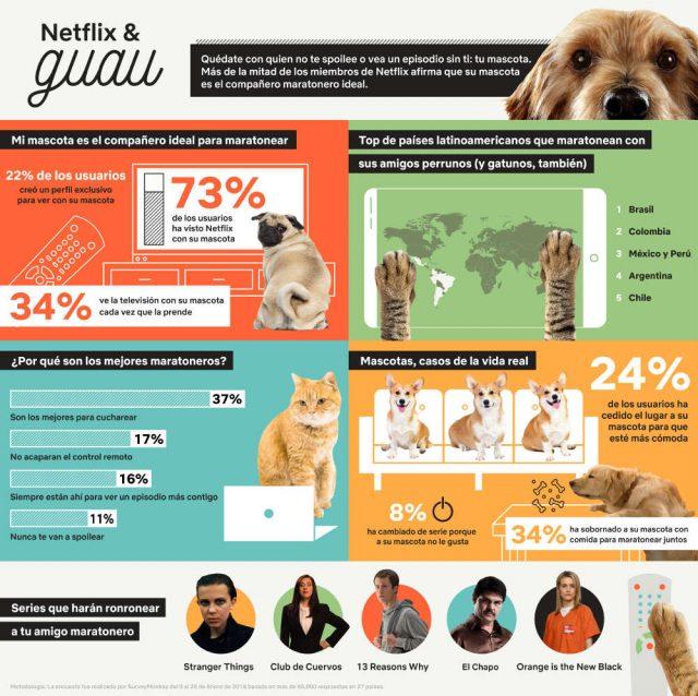 NETFLIX & GUAU: Maratonear es mejor con perros (y gatos)